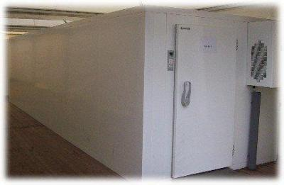 Viessmann kühlzelle